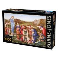 پازل ۱۰۰۰ تکه آیینه ونوس اثر ادوارد بورن جون DToys